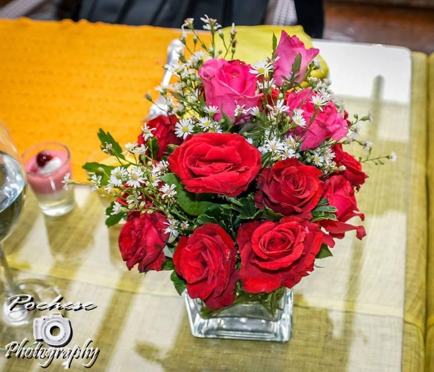 Pochese Roses