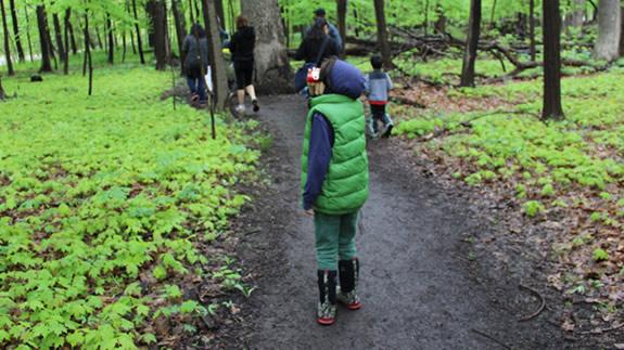 FREE Hiking Tips